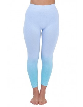 Blue Ombre Seamless Leggings